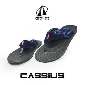 Cassius Biru