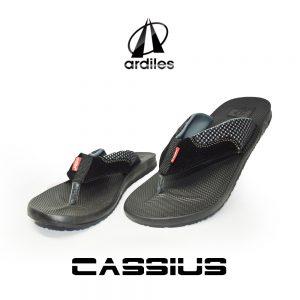 Cassius Hitam