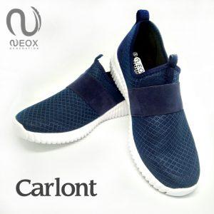 Carlont Biru